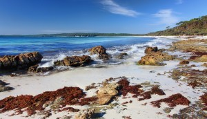 Hyams Beach, Jervis Bay Australia
